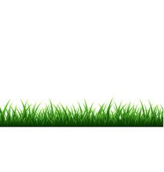 green grass border set on transparent background vector image