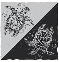 nautical t-shirt label design vector image
