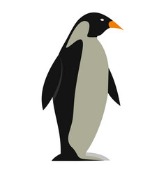 Penguin icon isolated vector