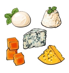 Set different cheeses mozzarella cheddar vector