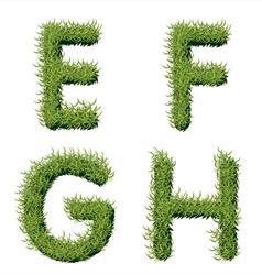 Green Grass Alphabet E F G H vector image