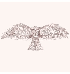 Patterned predator bird EPS10 vector image vector image