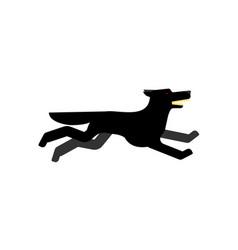 Black wolf runs isolated angry predator vector