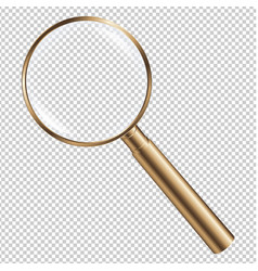 golden magnifying vector image