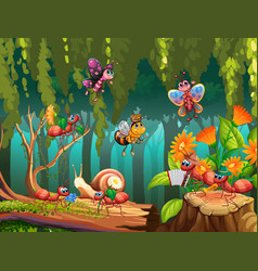 Group insect in fairy nature vector