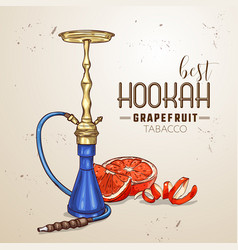 hand drawn hookah vector image