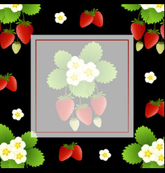 Red strawberry and flower banner on black vector