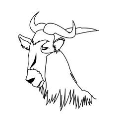 Wildebeest head african wildlife animal vector