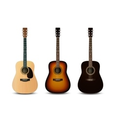 Realistic acoustic guitars set vector image vector image