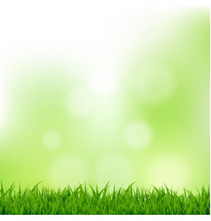 grass and bokeh vector image