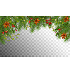 Christmas spruce border vector