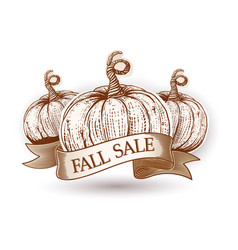 Fall sale ribbon with sketch pumpkins vector