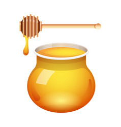 honey glass jar with honey dipper isolated vector image