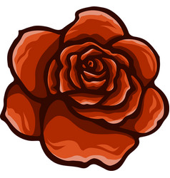 Red rose cartoon style on white background vector