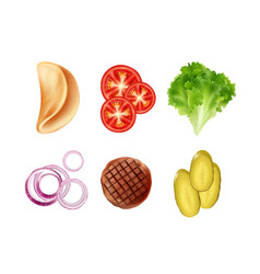 set of ingredients for taco tortilla vector image