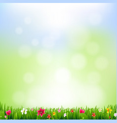 grass and flowers and bokeh vector image vector image