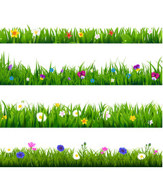 grass and flowers border set vector image vector image