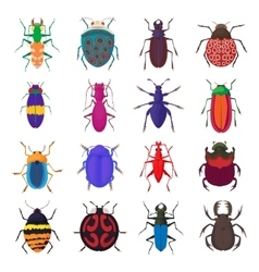 Insect bug icons set cartoon style vector image vector image