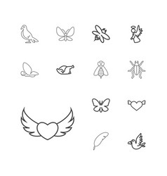 13 wing icons vector