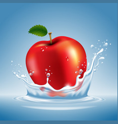 apple in water splash vector image