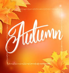 autumn background with autumn leaves frame and vector image