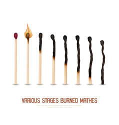 Burned Matches Set vector