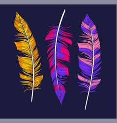 colorful boho feathers handdrawn vector image