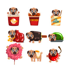 cute funny pug dog character inside fast food vector image
