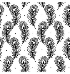 peacock feathers seamless pattern for your design vector image