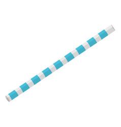Plastic straw accessory icon vector