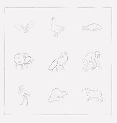 set of animal icons line style symbols with rat vector image
