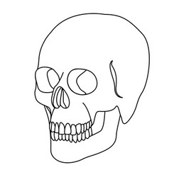 Silhouette skeleton of the human skull icon vector