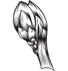 Stylized bud vector
