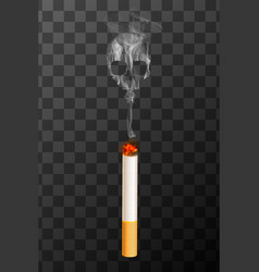 realistic burning cigarette with white smoke in vector image