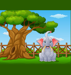 animal elephant beside a tree inside the fence vector image