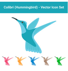 Colibri hummingbird - set of different colored vector