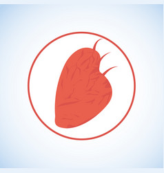 red human heart flat icon logo or symbol vector image