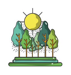 forest with trees and sun vector image vector image