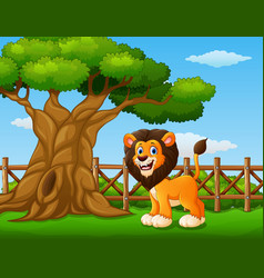 Animal lion standing beside a tree inside the fenc vector