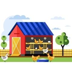 Chicken farm vector image