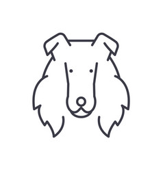 collie line icon sign o vector image