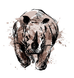 colored hand sketch of the running rhino vector image