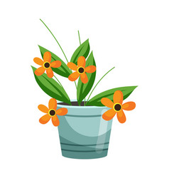flower composition in pot on white background vector image