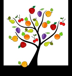 fruit tree vector image