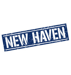 new haven blue square stamp vector image