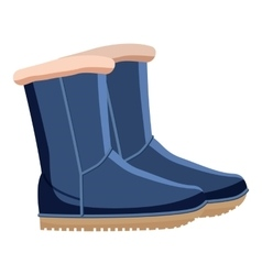 Pair of blue winter shoes icon cartoon style vector