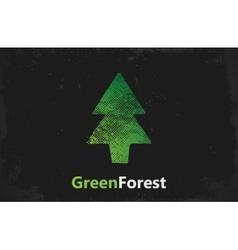 Pine logo design Green forest logo grunge logo vector image