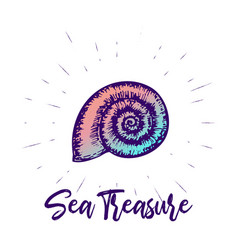 seashell and lettering design sea creature vector image