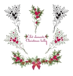 Set Hand drawing floral holly elements vector image