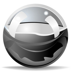 stainless ball vector image